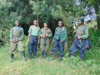 Census team including Karisoke's Jean Damascene (far left) and Gudula (middle)