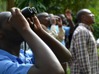 Citizen Science participants observe birds