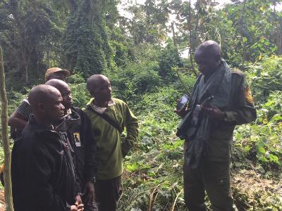 Kahuzi-Biega's Lambert Cirimwami instructs Nkuba-Biruwe staff