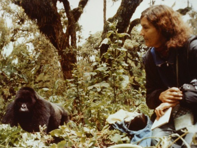 Dec. 26 marks 30 years since Dian Fossey's death