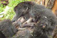 Amatwara and mother Bishushwe