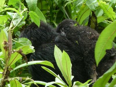 Bishushwe and infant
