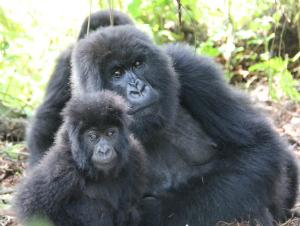 Bishushwe and her infant Amatwara