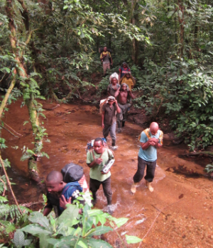 One of the Congo field teams crosses a river deep in the forest