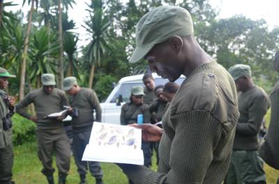 Emmanuel Harerimana studies a bird field guide during training