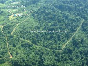 The GRACE forest enclosure
