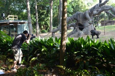 Jordi Galbany, Ph.D., at Zoo Atlanta