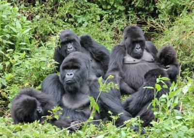 Isabukuru's group in happier times, last October