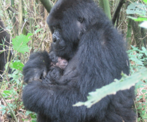 Kubaka and her infant