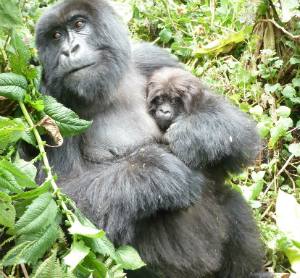 Kanama and her infant