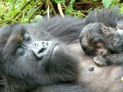 Muganga and new infant
