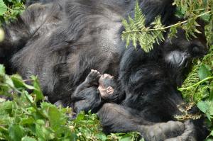 Nahimana and her newborn