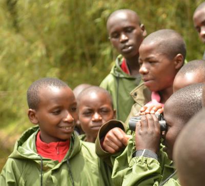 Seeing gorillas at Lake Ngezi