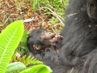 Nzeli's new infant