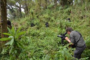 Peter McBride filming for Craghoppers in Volcanoes National Park