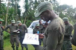 RDB guide Emmanuel Harerimana studies his bird field manual