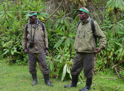 Fossey Fund trackers equipped for the field