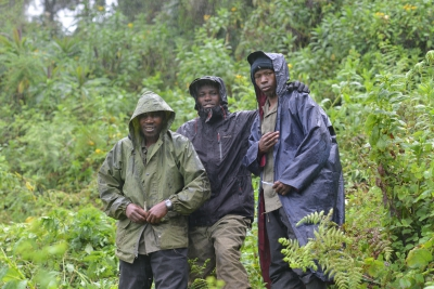 Trackers in the forests of Rwanda