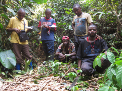 Fossey Fund trackers with a Grauer's gorilla nest