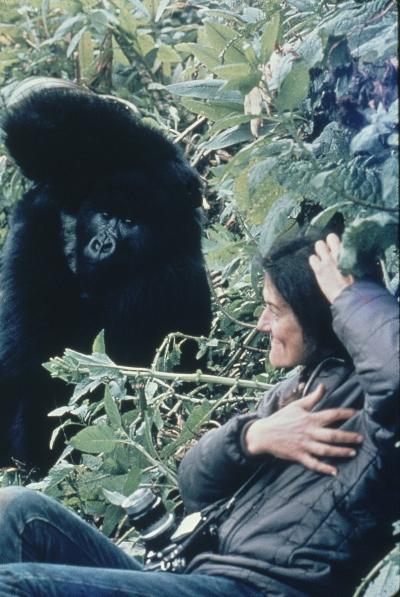 Dian Fossey with gorilla