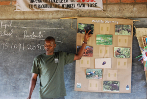 Joseph Karama, Fossey Fund educator