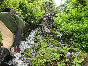 Joseph Karama introduces Rwandan students to their forest