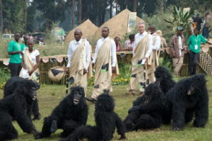 Guests of honor walk past entertainers in gorilla suits. Photo by Keiko Mori/RDB