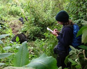 Winnie Eckardt in the field with Karisoke, 2007