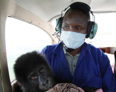 Shamavu and Kayivumba on the flight to GRACE