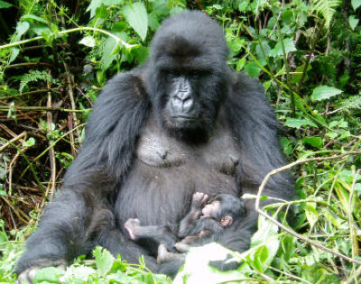 Mother Mahirwe and her infant