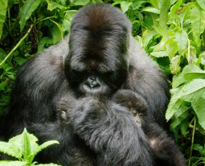Isabukuru with infant Sakara