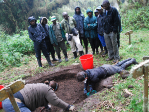 Exhuming silverback Titus's skeleton