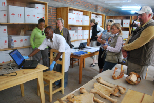 Fossey Fund board members and President and CEO Clare Richardson visited the skeleton project lab in 2011.
