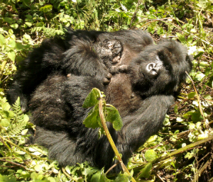 Imvune with her newborn just after the birth