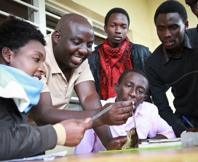 Deo Tuyisingize teaches Rwandan university students how to measure small mammals.