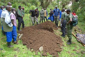 Digging Titus grave
