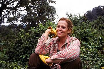 Sigourney Weaver in Rwanda