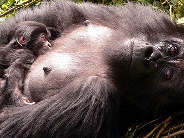 Umuco with her new infant
