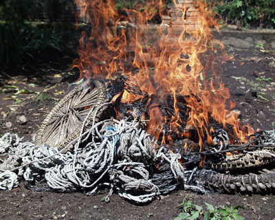 Karisoke staff collect and burn about 1,000 snares each year.