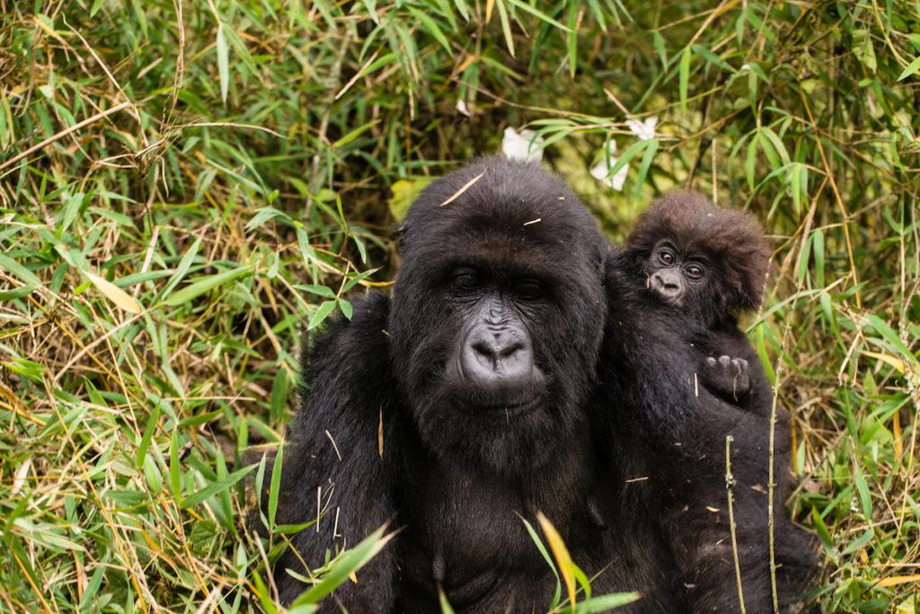 Board members visited Kurudi and infant in Titus' group