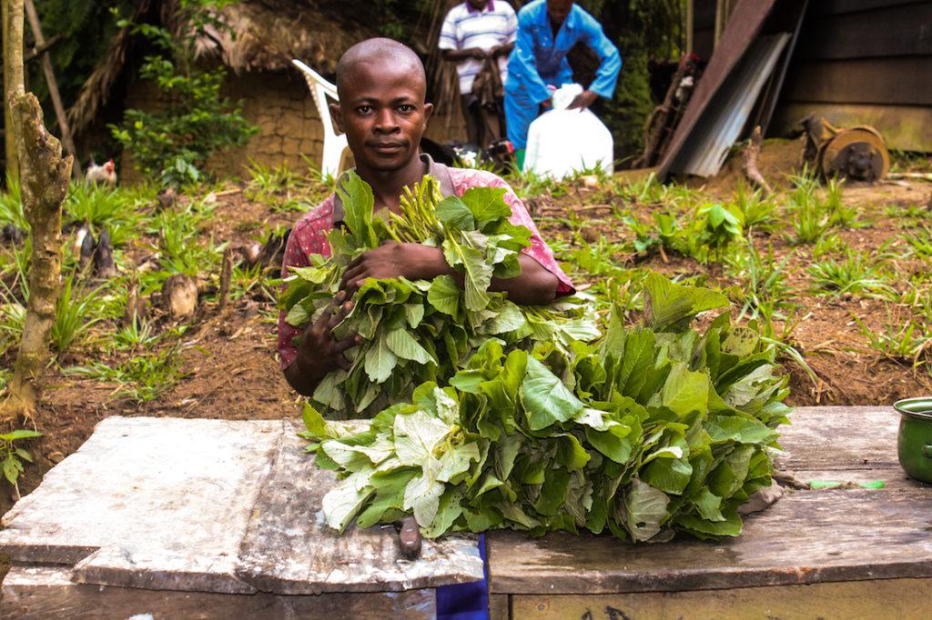 Community programs in Congo