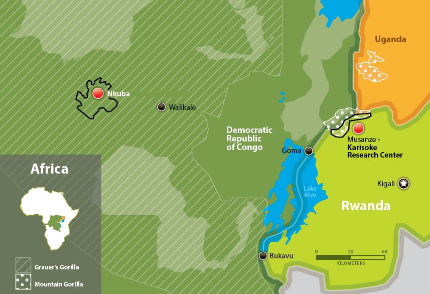 Fossey Fund Map