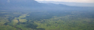 Congo where the Dian Fossey Gorilla Fund works