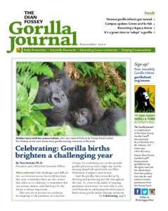 Gorilla Journal Newsletter November 2020