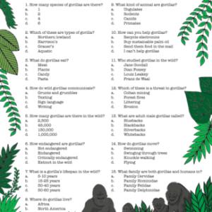 Gorilla Quiz